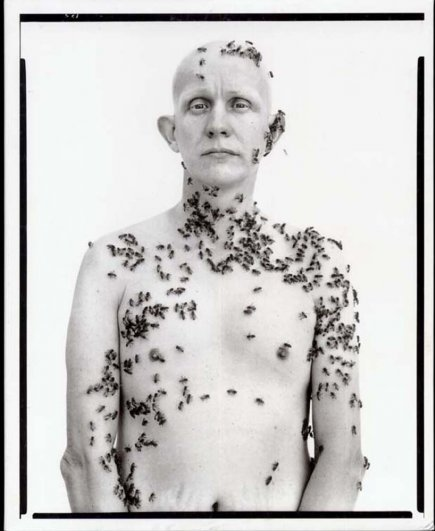 Аведон Ричард - фотограф, который создал глянец! - №15