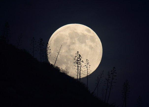 Как правильно фотографировать Солнце и Луну? - №9