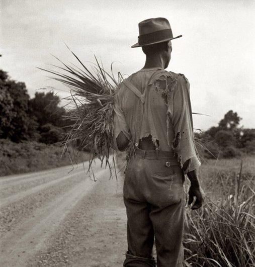 Июль 1936, сборщик хлопка около Виксберга, Миссисипи, фотограф: Доротея Ланж