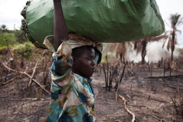После пожара в восточной части Сьерра-Леоне, фото: Finbarr O'Reilly