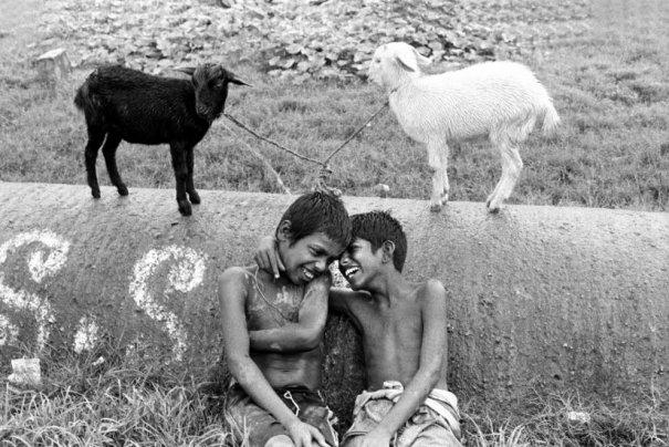 Twins. Автор: Nimai Chandra Ghosh