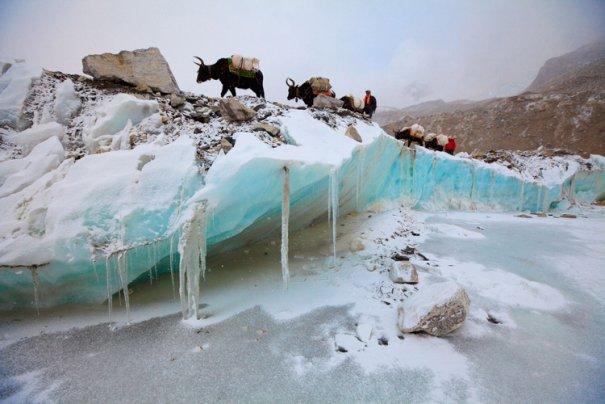 National Geographic переносит нас на самую высокую гору в мире - №12