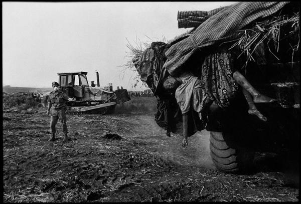 Гениальный фотограф-документалист Джеймс Нахтвей - №16
