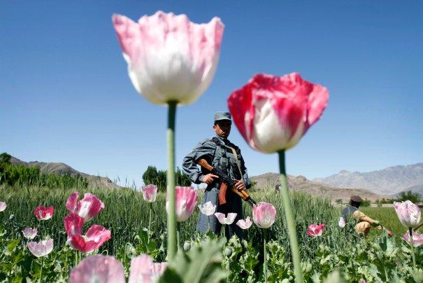 Афганистан. ФОТОхроники за апрель'12 - №15