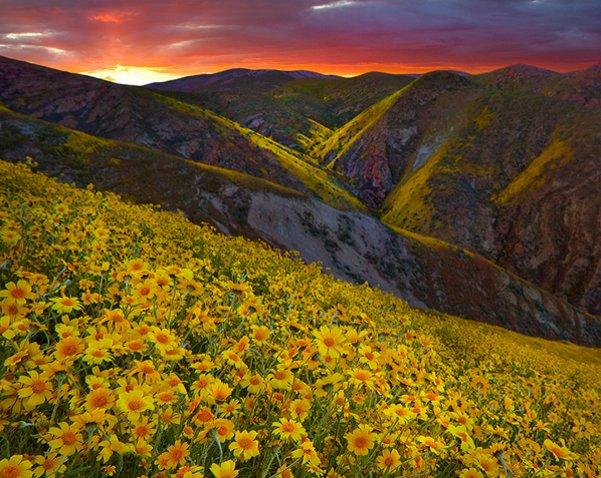 Carrizo Plain Canyon Sunset, California