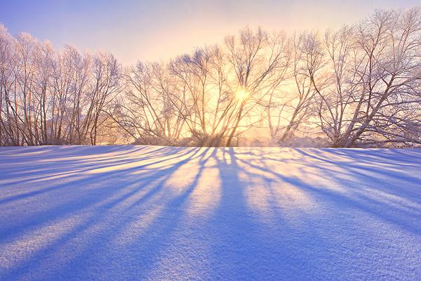 Palouse Winter Shadows
