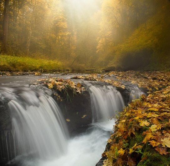 Silver Falls Glimpse Of Light