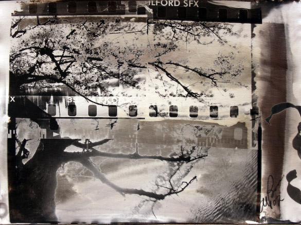 Массимо Берсани: фотография как кредо - №6