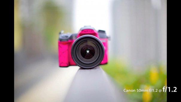 Сравнение 50mm объективов Canon - №12