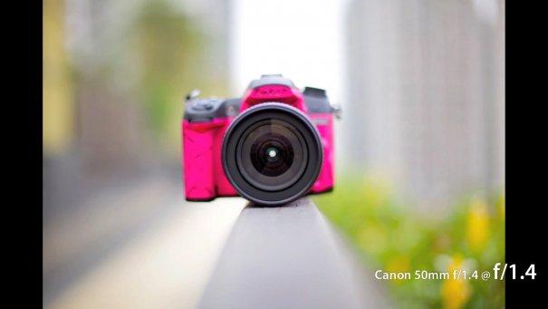 Сравнение 50mm объективов Canon - №13