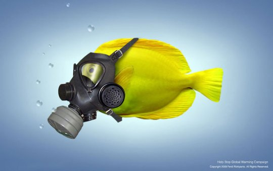 """Мы за чистые океаны!"""