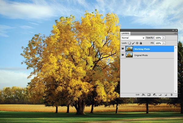 Эффект инфракрасной фотографии c Photoshop CS5 - №3
