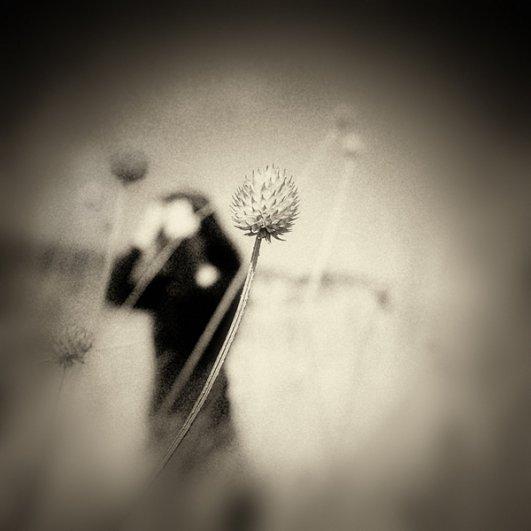 Художественная фотография YongJun Qin - №6