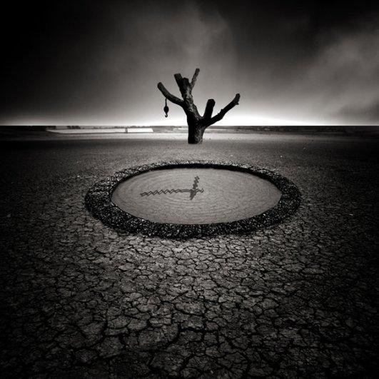 Художественная фотография YongJun Qin - №16