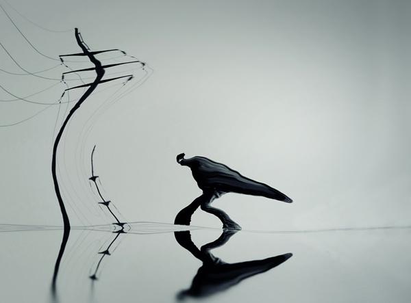 Художественная фотография YongJun Qin - №17