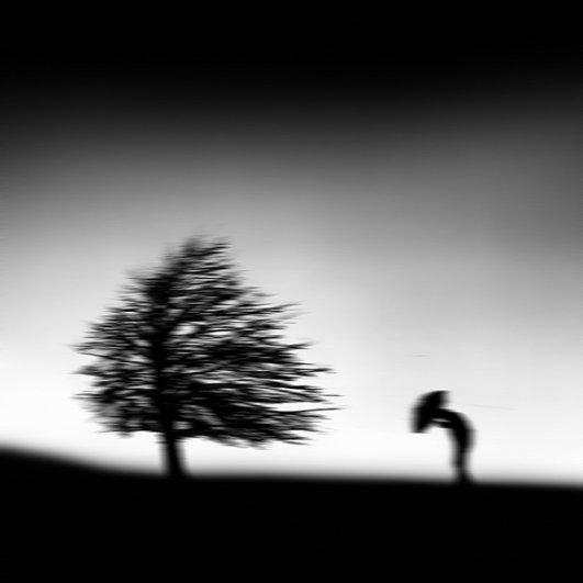 Художественная фотография YongJun Qin - №27