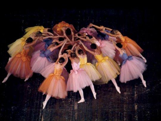 Балерины (фото:James L. Amos)