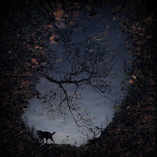 Вдохновляющие фотографии Себастьяна Лукцуво - №15