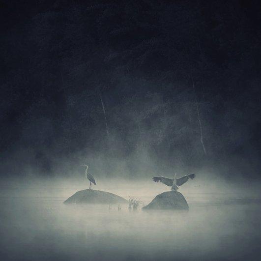 Вдохновляющие фотографии Себастьяна Лукцуво - №16