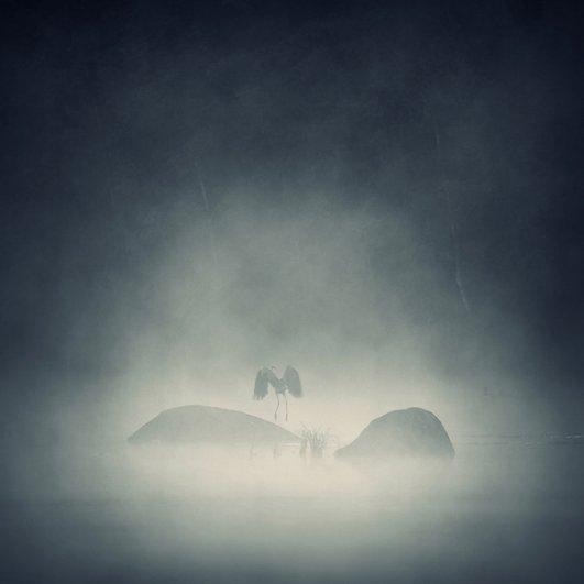Вдохновляющие фотографии Себастьяна Лукцуво - №17