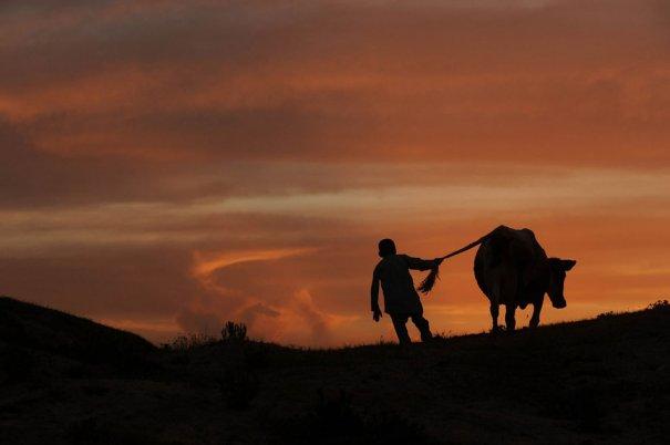 (Qais Usyan/AFP/Getty Images)