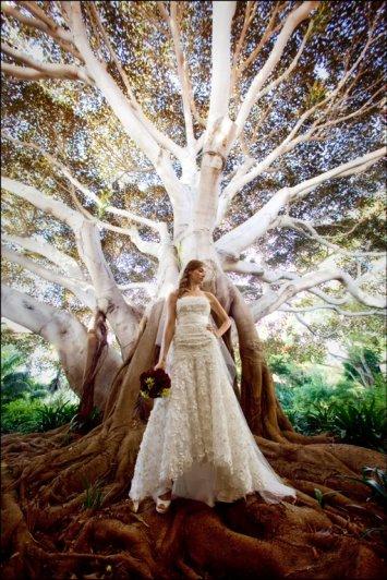 Джо Бьюссинк — самый дорогой свадебный фотограф в мире - №15