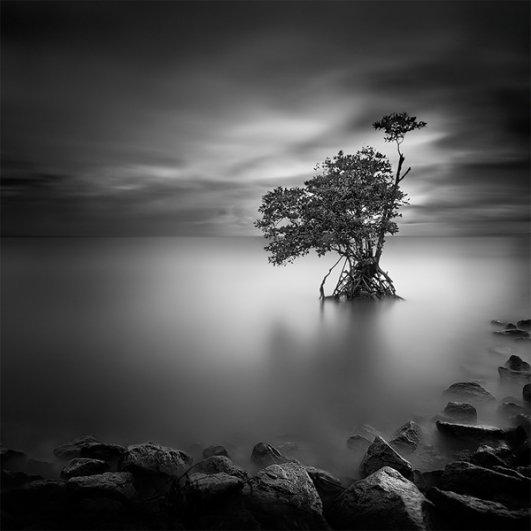 Уилл Ли: черно-белые фотографии с долгой экспозицией - №1