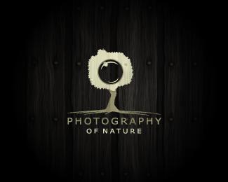 Необычные логотипы фотографов и фотостудий - №12
