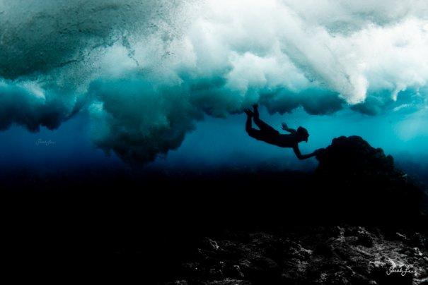 Подводная фотография Сары Ли - №1