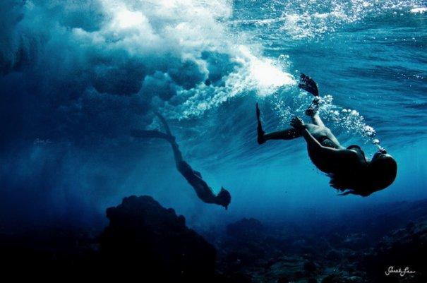 Подводная фотография Сары Ли - №4