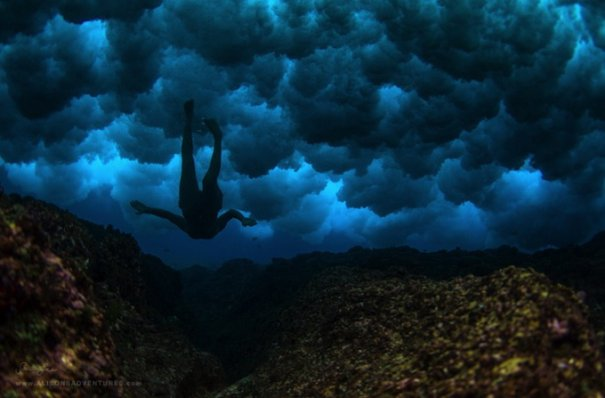 Подводная фотография Сары Ли - №5