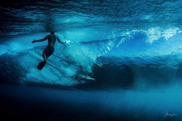 Подводная фотография Сары Ли - №7