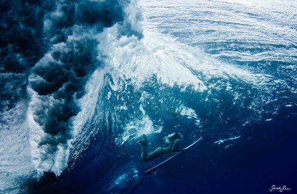 Подводная фотография Сары Ли - №8