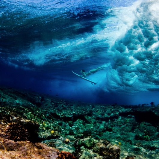 Подводная фотография Сары Ли - №9