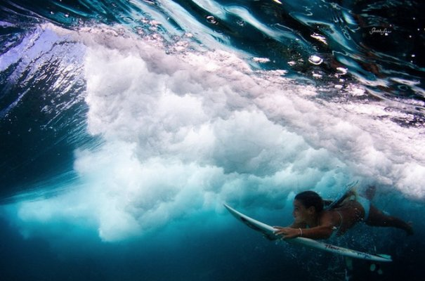 Подводная фотография Сары Ли - №10