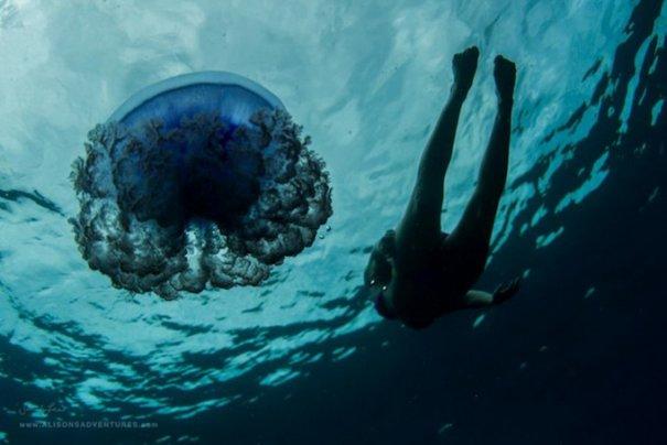 Подводная фотография Сары Ли - №12