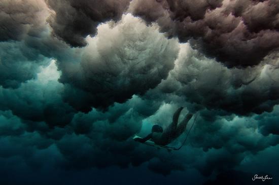 Подводная фотография Сары Ли - №14