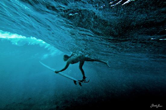 Подводная фотография Сары Ли - №15