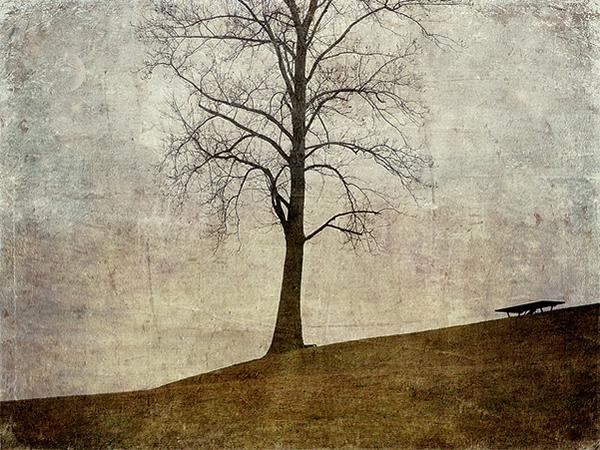 Текстурная фотография Памелы Шмидер - №14