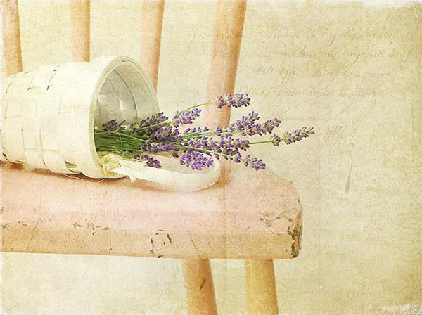 Текстурная фотография Памелы Шмидер - №20