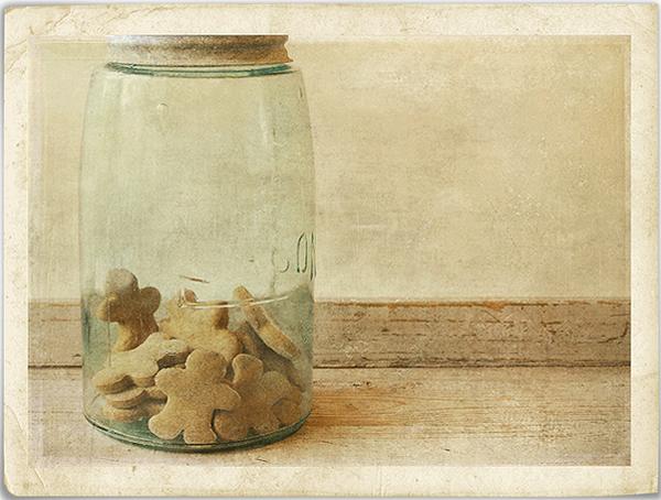 Текстурная фотография Памелы Шмидер - №26
