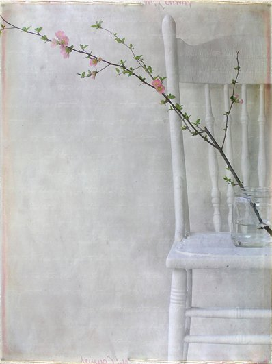 Текстурная фотография Памелы Шмидер - №27