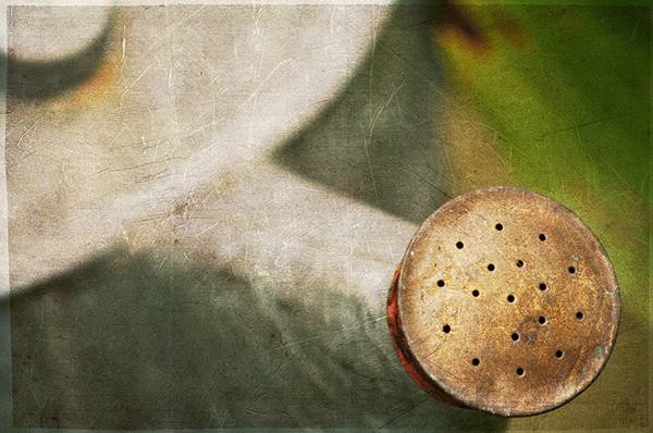 Текстурная фотография Памелы Шмидер - №30
