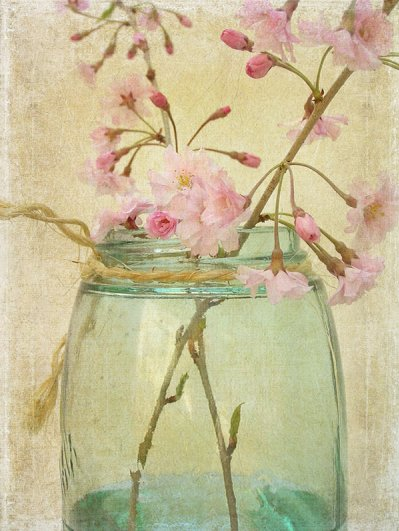 Текстурная фотография Памелы Шмидер - №34