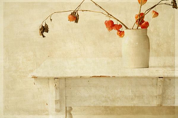 Текстурная фотография Памелы Шмидер - №37