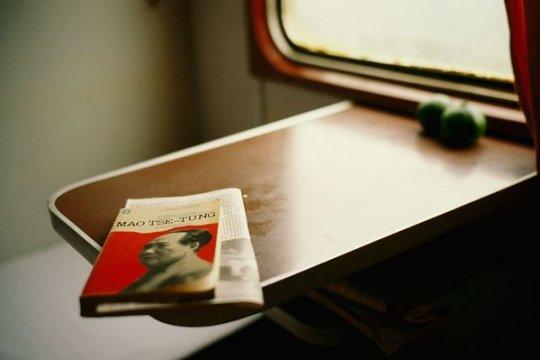 Эксклюзивный дизайн поезда (фото:Justin Guariglia)