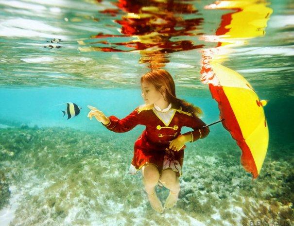 Подводная фотография Елены Калис - №5