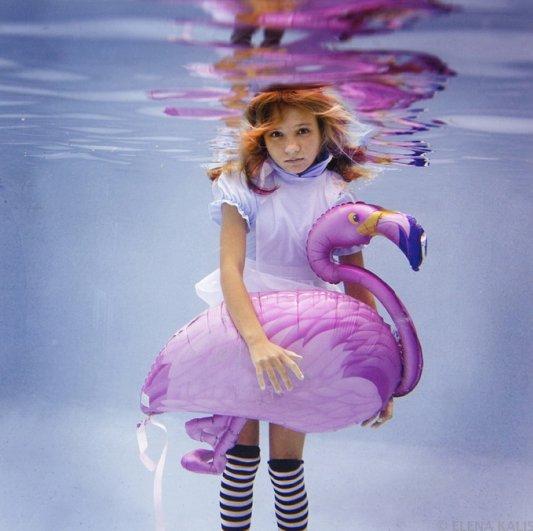 Подводная фотография Елены Калис - №9