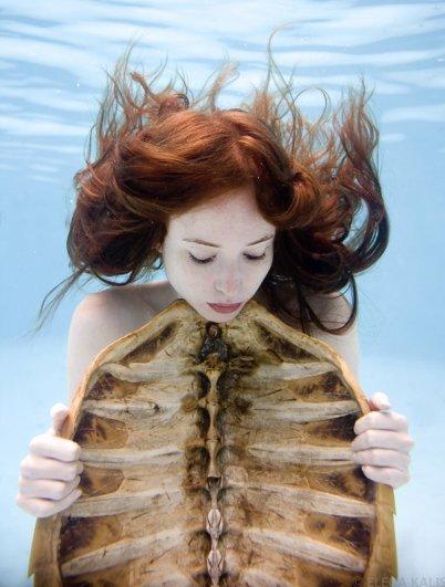 Подводная фотография Елены Калис - №23