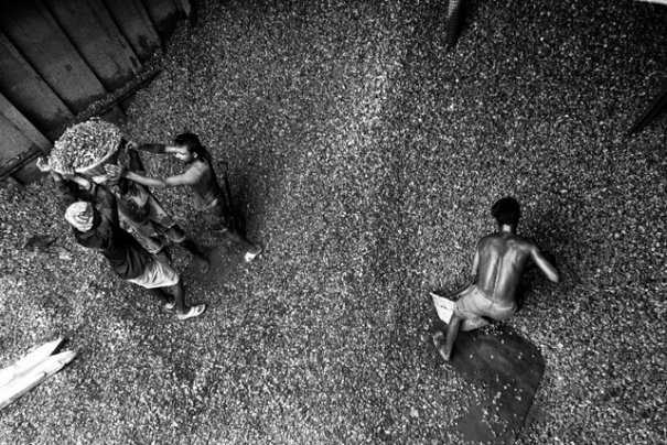 Фотограф из Бангладеша Камрул Хасан - №16